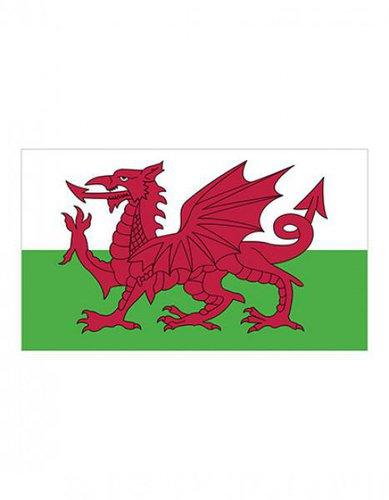 Wales Fahne EM 2016