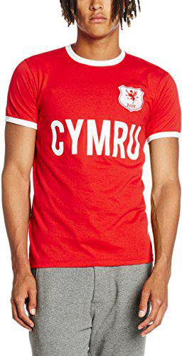 Wales T-Shirt EM 2016