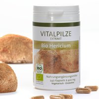 Pilze Wohlrab Hericium Vitalpilze Bio Extrakt Kapseln (240 Stk.)