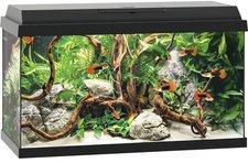 Juwel Aquarium Primo 60 LED schwarz ohne Unterschrank (25360)