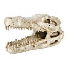 Trixie Krokodil-Schädel (14 cm)