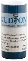 GudJons Euphrasia C 200 Einzeldosis Globuli (0,5 g)