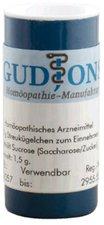 GudJons Silicea C 12 Globuli (1,5 g)