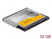 DeLock compactFlash Card Fast (32GB)