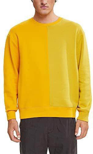 Esprit Sweatshirt Herren