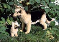 Kösener Schäferhund 44 cm