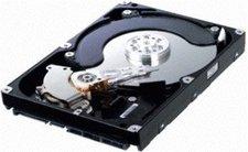 Fujitsu Hot Swap 1TB (S26361-F3265-L100)