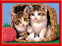 Ravensburger Malen nach Zahlen Katzen im Körbchen