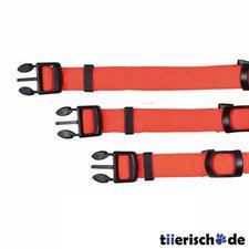 Trixie Halsband Flash L-XL (25 mm / 55-70 cm)