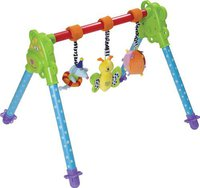 Taf Toys Junior Gym