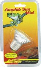 Lucky Reptile Amphib Sun klein 20 LED