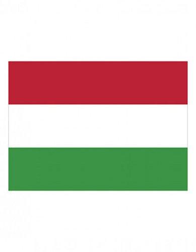 Ungarn Fanfahne EM 2016