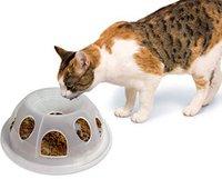 PREMIER Napf Tiger Diner mit Unterlegmatte