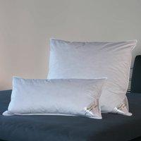 BettwarenShop Comfort Federkissen fest 40x80 cm