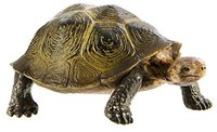 Safari Wüstenschildkröte (295329)
