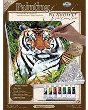Royal & Langnickel Malen nach Zahlen Leinwand Tiger in Deckung (PCS4)