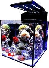 Aqua Medic Blenny advanced (80 L) Meerwasseraquarium