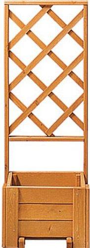 gaspo blumenkasten mit spalier wachau 50 133. Black Bedroom Furniture Sets. Home Design Ideas
