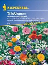Wildblumenmischung (Samen)