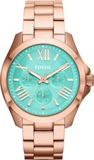 Fossil Cecile (AM4540)