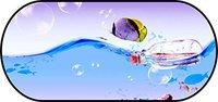 Walser Sonnenschutz Heckscheibe Selbsthaftend Motiv Fisch