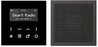 Jung RAD Smart Radio - Set Mono