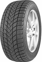 Mastersteel Winter + 205/55 R16 91H