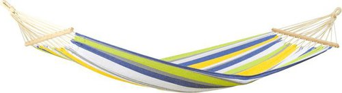 Amazonas Tonga kolibri