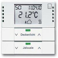 Busch-Jaeger Raumtemperaturregler mit Tastsensor 2fach (6128-84)