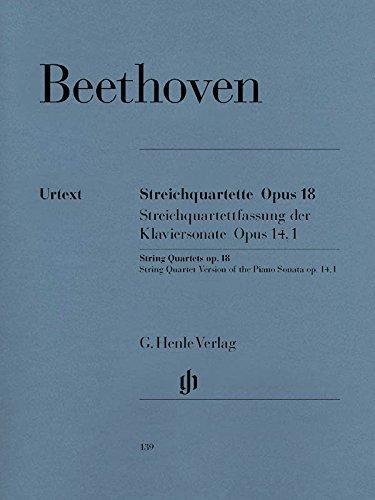 Geigen / Violinen
