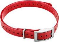 Garmin Hundehalsband (1,9 cm) rot