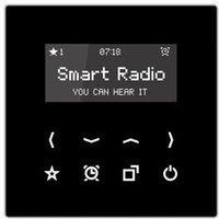 Jung Serie LS Smart Radio (RAD LS 908)