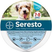 Bayer Seresto Halsband für kleine Hunde unter 8 kg