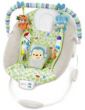 Bright Starts Comfort & Harmony Monkey