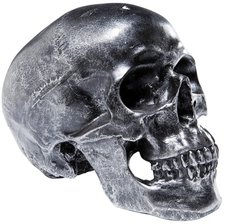 Kare Spardose Skull Silver Antique