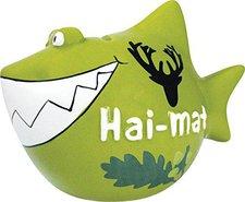 KCG Spardose Hai-mat