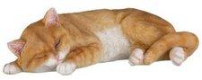 Home Affaire Katze braun
