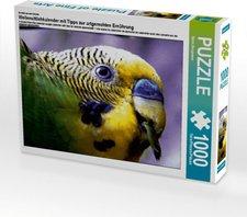 Calvendo Wellensittichkalender mit Tipps zur ar...