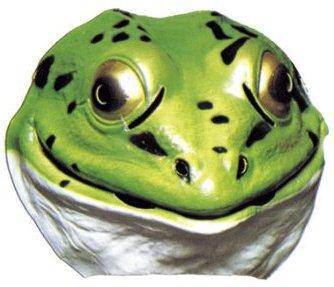 Frosch Kostüm