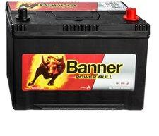 Banner Power Bull 12 V 100 Ah (P10032)
