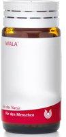 WALA Aesculus E Sem. D 3 Globuli (23 g)