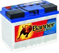 Banner Energy Bull 12 V 60 Ah (95501)